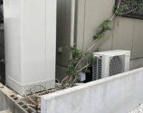 電気温水器から給湯専用エコキュートへお取替えしました。